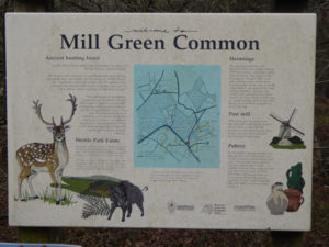 Mill Green Common