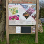 Danbury Common