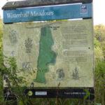 Essex Wildlife Trust - The Ford Little Baddow