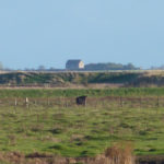 Old Hall view to Bradwell